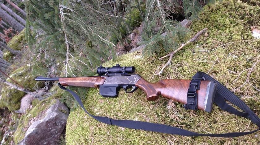 EU: Condenan a hombre que le disparó accidentalmente a cazador(Ilustrativa/Pixabay)