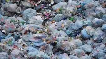 Sedema pide a productores respetar prohibición de bolsas de plástico