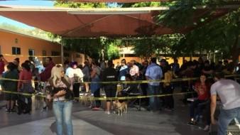 COAT esteriliza hasta 20 mascotas cada fin de semana