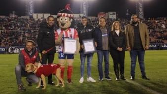 Atlético de San Luis recibió reconocimiento por adoptar a Tunita