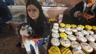 Yoselín vende cupcakes para tratar cáncer de su mascota