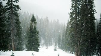 Los frentes fríos números 35 y 36 y la Séptima Tormenta Invernal de la temporada generarán viento con rachas de hasta 80 km/h y tolvaneras.
