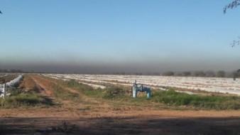 Continúa quema de llantas en valles de Guaymas y Empalme