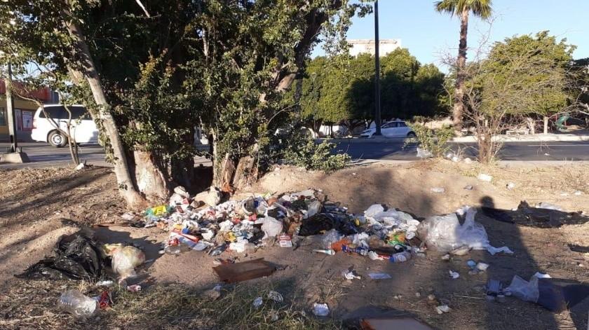 Así encontraron los integrantes de Ciudadanía Activa Sonora el parque de Villa de Seris, a pesar de que ellos acuden cada sábado a limpiar.(Cortesía)