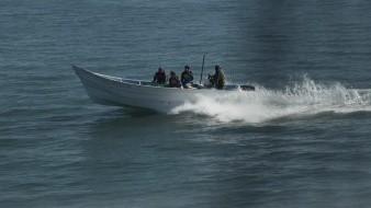 En un comunicado, la organización señaló que el ataque ocurrió la mañana del sábado en un sector de protección de la vaquita marina llamada