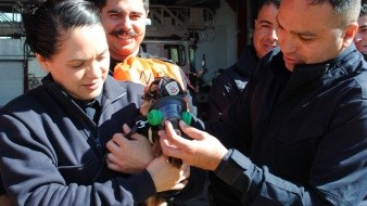 Los kits de emergencia constan de tres mascarillas de oxígeno de diferentes tamaños, así como un manual para dar respiración asistida.
