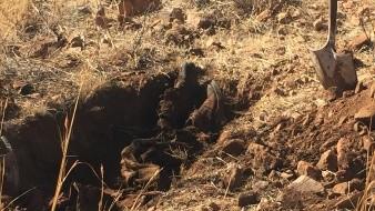Retiran 200 mil litros de aceite de fosa en busca de 3 cuerpos