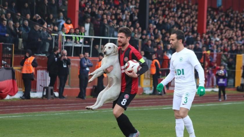 Perro entra a la cancha y jugadores ¡no le pueden quitar el balón!(Twitter)