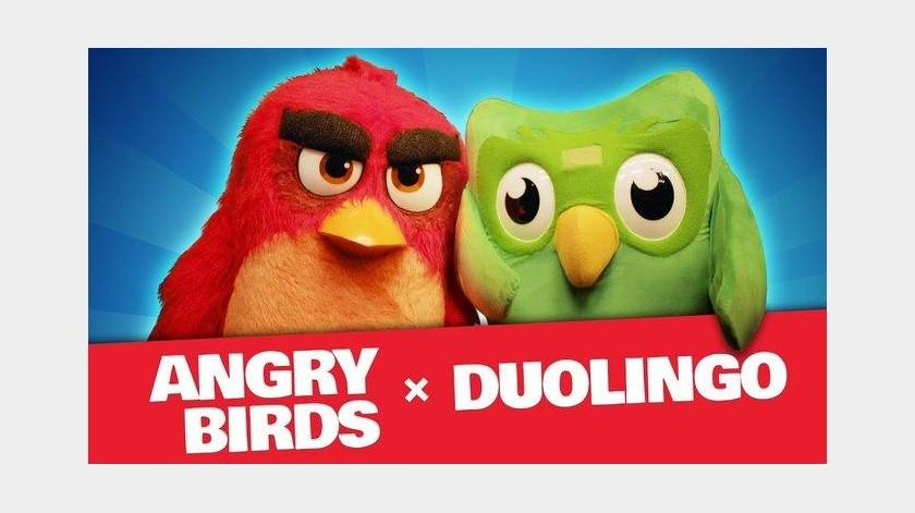 Crossover entre Angry Birds y Duolingo