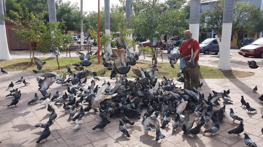 Don Abraham es el encantador de palomas(Mayra Echeverría)