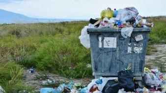 La criatura puede comer plástico, incluso el polietileno, un plástico común y no biodegradable que actualmente afecta a los mares.