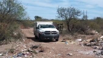 Obregón: Encuentran dos cuerpos sin vida en un baldío de la colonia Beltrones