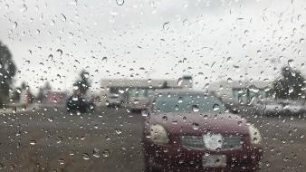 Esperan lluvia en varios municipios del Norte