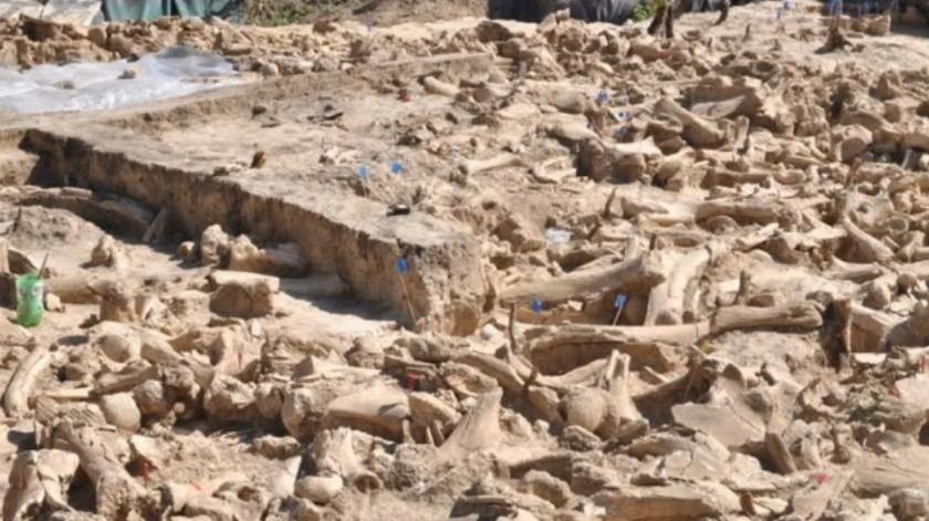 Descubren estructura de la edad de hielo con huesos de 60 mamuts(A. J. E. Pryor et al., 2020/Antiquity)