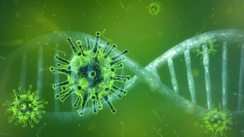 Asciende a 32 la cifra de casos confirmados de coronavirus en Nuevo León(Ilustrativa/Pixabay)