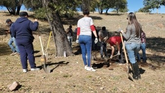 Localizan más cuerpos y fosas en Nogales