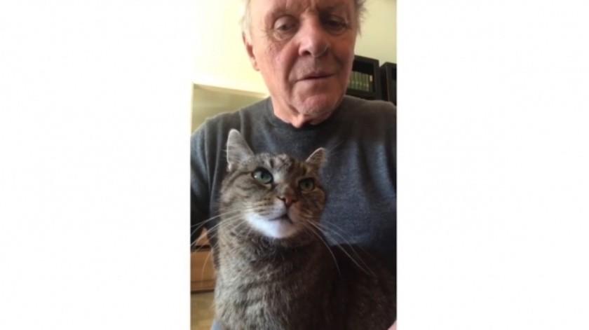 Anthony Hopkins toca el piano para su gato Niblo