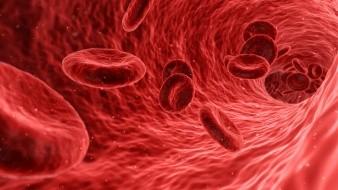Además de la transfusión de plasma, todos ellos siguieron recibiendo tratamiento antiviral con diversos medicamentos, explica el informe.