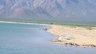 Etnia Seri restringe acceso en Punta Chueca para prevenir contagios de Covid-19