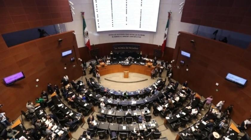 Senadora del PRI insta al Gobierno Federal a frenar Dos Bocas y Tren Maya(Agencia Reforma)