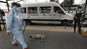 Violencia en México no disminuye a pesar de medida 'Quédate en casa' por Covid-19