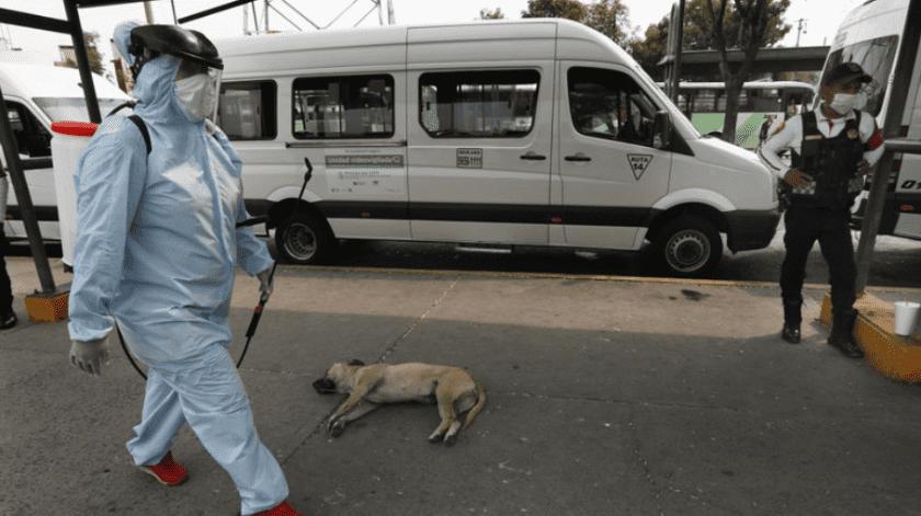 Violencia en México no disminuye a pesar de medida 'Quédate en casa' por Covid-19(AP)
