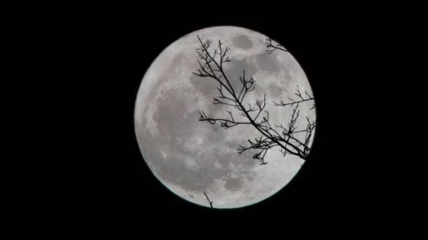 Disfruta esta noche la Superluna rosa, la más grande del año; NASA transmitirá su puesta(GH)