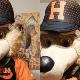 Safe en Home: La original campaña de Naranjeros para que te quedes en casa