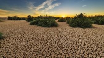 Decreta Conagua emergencia por sequía extrema en México
