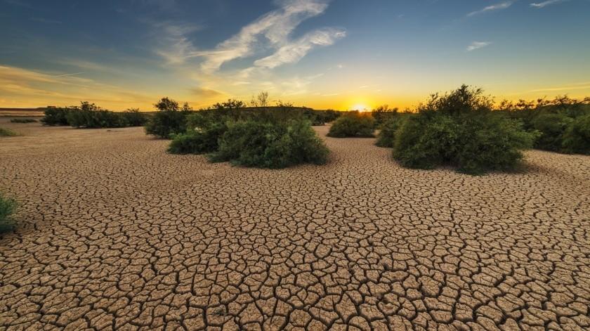 Decreta Conagua emergencia por sequía extrema en México(Pixabay)