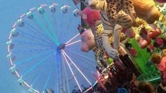 Posponen Feria de San Diego hasta el 2021