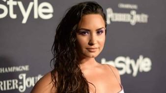Demi Lovato recién dijo que no tenía amistad alguna con Selena Gomez.