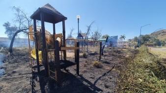 Se incendia maleza en La Sauceda