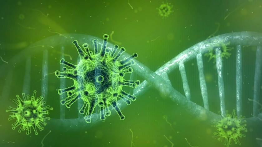 Científicos descubren mutación más contagiosa y dominante del Covid-19; aunque no más letal(Pixabay / Ilustrativa)