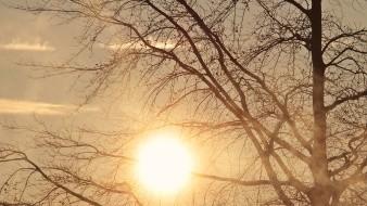 Hermosillo registrará esta semana temperaturas entre 35 y 37 grados; y posibles lloviznas