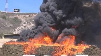 La incineración se realizó a las 9:00 horas de hoy.