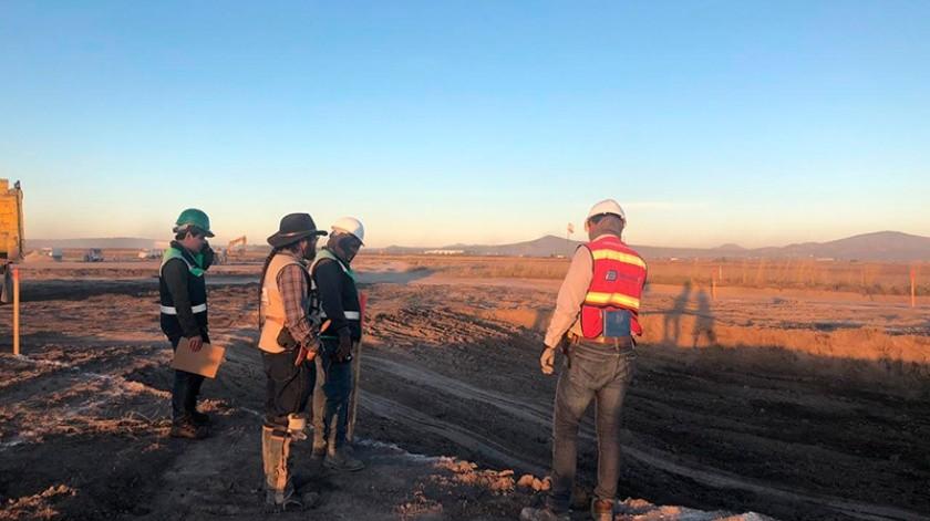 En octubre del año pasado, comenzaron las excavaciones y ya llevan encontrados restos de al menos 60 ejemplares.