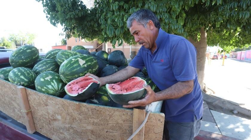 Jesús López desde hace años vende  sandías en Ures, Sonora, y cuando aquí se acaba la temporada la trae incluso desde Chihuahua.(Teodoro Borbón)