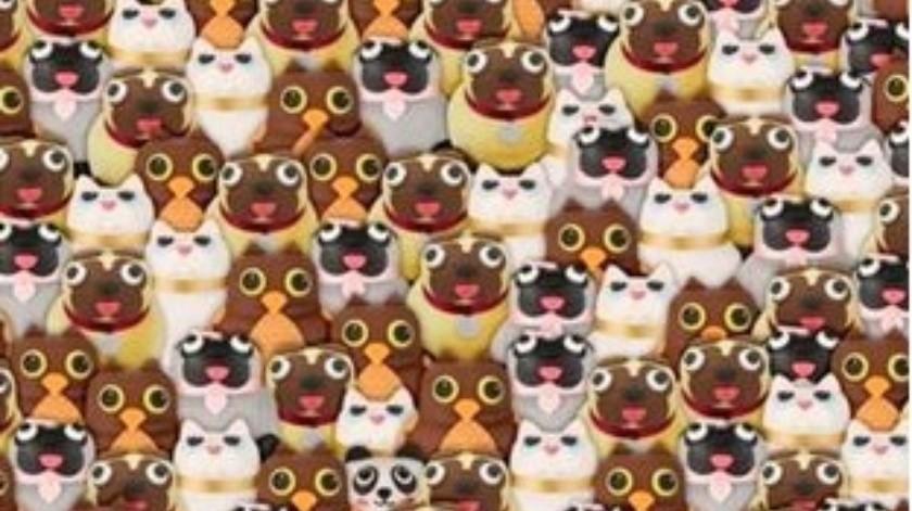 El reto visual: Encuentra el oso panda(Tomada de la red)