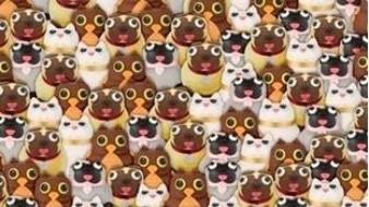 ¿Puedes ver el panda en esta imagen? El reto visual casi imposible de resolver