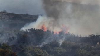 Los incendios forestales son prevenibles.