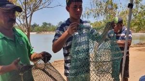 Reinicia combate de pez diablo en la Laguna del Náinari