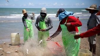 Entregarán 39 mdp a pescadores y acuacultores de BC