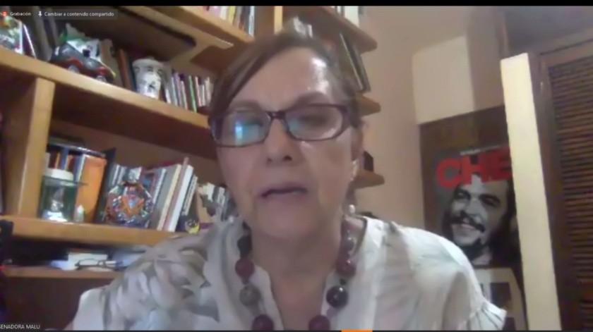 La senadora Martha Lucía Micher Camarena (Morena) ofreció disculpas por el incidente.
