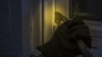 Hombre es herido con machete por ladrones en colonia Laura Alicia Frías