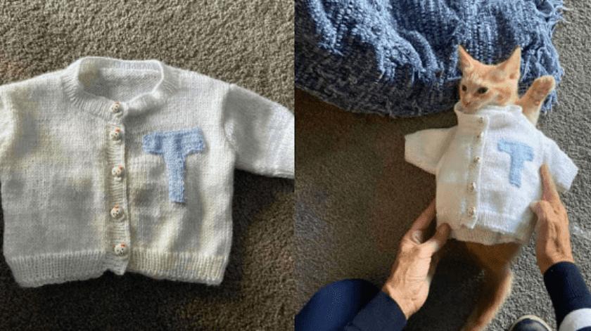 """Mujer no para de tejer ropa para su """"nieto gatuno"""" de tres meses"""