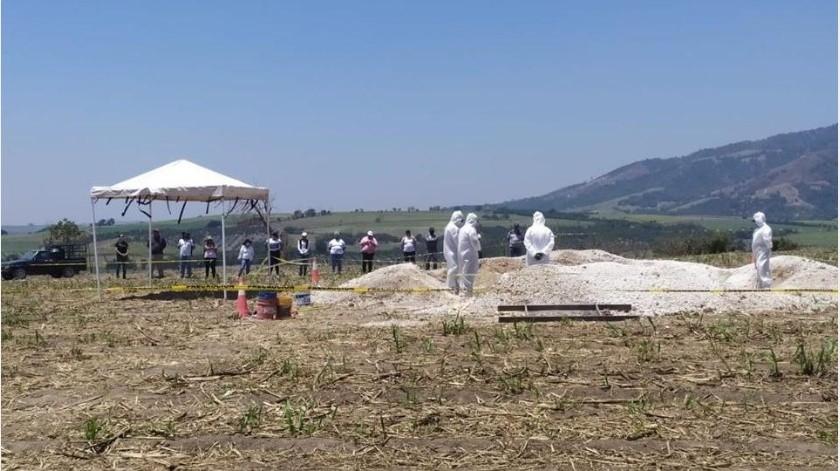 Localizan nueve cuerpos en fosa clandestina en Nayarit(Facebook Colectivo Familias Unidas por Nayarit)