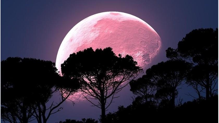 """""""Luna de Fresa"""": el eclipse que podrás disfrutar por 19 horas, ¿en qué consiste?(Pixabay)"""