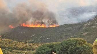Bomberos sigue luchando contra incendio en Valle de las Palmas.