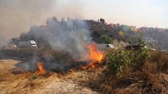 Atienden bomberos 113 reportes por incendio